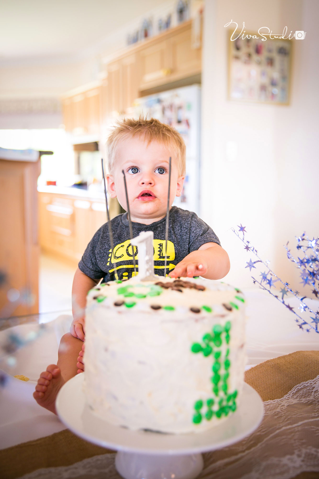 VivaStudio_Design_Photograpphy_Brisbane_Baby_Sidney_1st_Birthday_Party0058-org